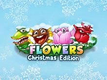 Цветы: Рождественское Издание